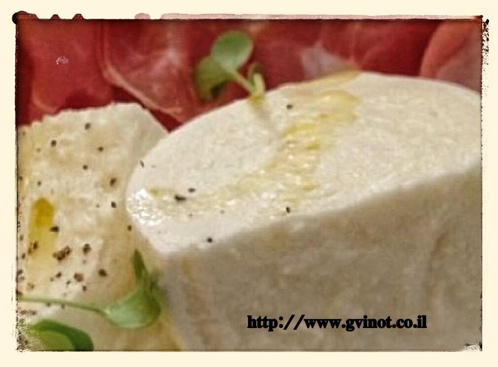 גבינה רכה תוצרת בית